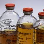 Caldos para Hemocultivos Brizuela-Lab.