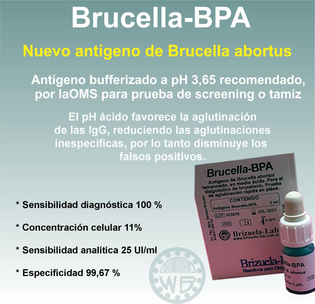 Brucella BPA Brizuela-Lab.